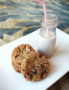 gluten free / vegan chocolate chip cookies